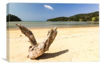 Driftwood on the whote sand beach at Layan, Bang T, Canvas Print