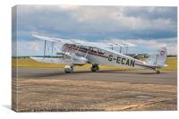 De Havilland DH84 Dragon G-ECAN, Canvas Print