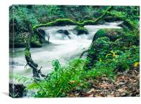 Fast Flowing River, Canvas Print