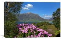 View of Torridon, Canvas Print
