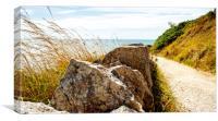 Coastal Path, Canvas Print