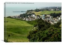 View of Hastings town from the East Hill, Canvas Print