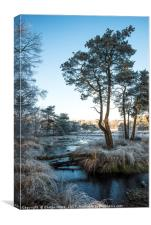 winter landscape with trees and water, Canvas Print