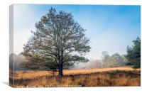 single tree in autumn landscape, Canvas Print