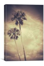Sepia Toned Retro Palms, Canvas Print