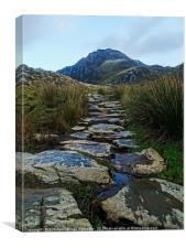 Stones pathway to The Tryfan, Canvas Print