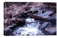 Amicalola Falls in February, Canvas Print