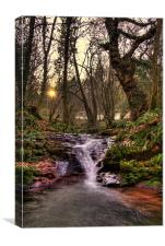 Evening Falls, Canvas Print