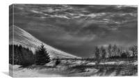 Mountain Snow, Canvas Print