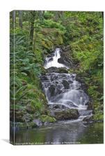 Landscape, River, Kenick Burn, Lauriston Forrest,
