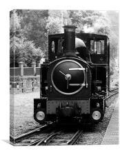 Welshpool Light Railway, Canvas Print