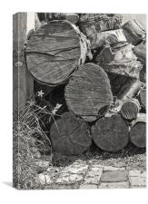 Log Pile, Canvas Print