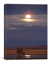 Moon rising, Canvas Print
