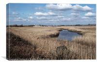 Reed Beds, Canvas Print