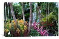 RHS Chelsea The Hidden Beauty of Kranji, Canvas Print