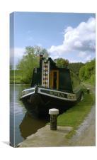 Moored narrowboat, Canvas Print