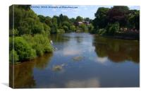 River Wye From the old bridge Hereford, Canvas Print