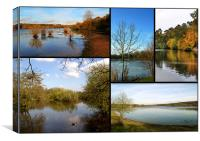 Country Parks Collage, Canvas Print