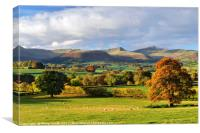 The Brecon Beacons with Oak Tree in Autumn Colour., Canvas Print