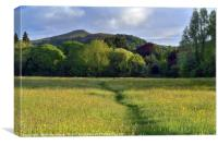 Sugarloaf from Castle Meadows, Abergavenny., Canvas Print