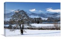 Brecon Beacons and Oak Tree in Winter., Canvas Print