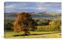 Pen y Fan and Cribyn, The Brecon Beacons 2., Canvas Print