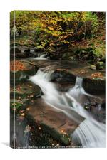 Nant Dyar in Autumn, Clydach Gorge., Canvas Print