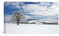 Mynydd Troed in Winter., Canvas Print