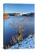 Winter Day at Llyn Brianne, Mid Wales., Canvas Print