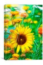 Spring Wildflowers, Canvas Print