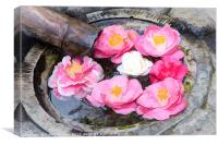 Camellia flowers in Japanese fountain, Canvas Print