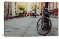 The vintage bicycle, Canvas Print
