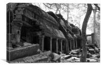 Ruins in Cambodia, Canvas Print