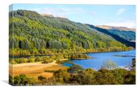 Banks of Loch Lubnaig in Scotland, Canvas Print
