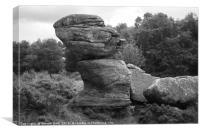 Brimham Rocks Nidderdale, Canvas Print