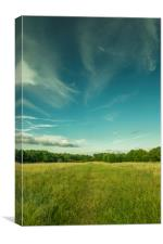 Green park and blue sky, beautiful nature colours, Canvas Print