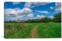 Spring nature, landscape in wyken croft park, UK, Canvas Print