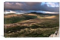 View from Cold Law  Northumberland, Canvas Print