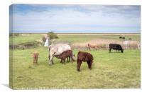 Farming in the Norfolk Marshland, Canvas Print