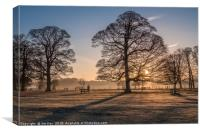 Sunrise and Winter Trees Felbrigg, Canvas Print