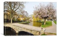 Spring Blossom Bourton-on-the-Water , Canvas Print