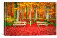 Benches on a carpet of autumn leaves , Canvas Print