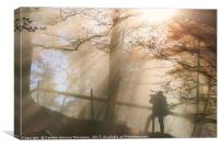 Silhouette of a man under sun rays in autumn color, Canvas Print