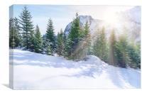 Sun rays through snowy mountains and trees, Canvas Print