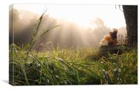 Two toys embraced under sun rays, Canvas Print