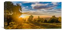 Sunset on May Hill, Canvas Print