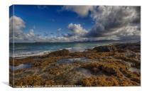 Penmon Coastline, Canvas Print