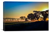 Sunrise across the Somerset Levels Glastonbury Uk, Canvas Print
