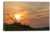 Sunset At Old Winchester Hill, Canvas Print