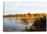 Derbyshire lake, Canvas Print